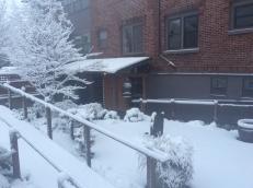 chobo-ji-snow-day-23